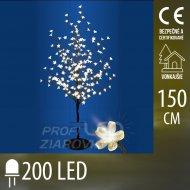 Vianočná LED svetelná ozdoba - kvitn...